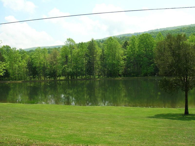 Personal Fishing Pond