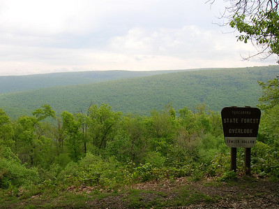 Fowlers Hollow Overlook