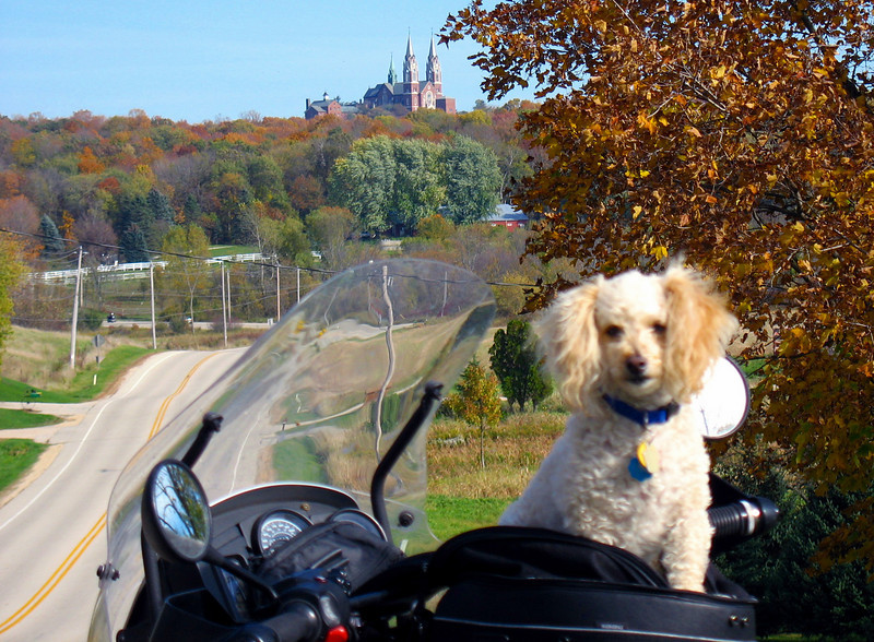 The dog is a 9 pound toy poodle mix named Buddy. Buddy has been a tank bag dog for 10 years.<br /> <br /> The Church on the hill is Holy Hill. Holy Hill is about 20 minutes from West Bend. Holy Hill ranks as the 30th highest point in Wisconsin.<br /> <br /> This Picture is taken a couple of miles west of the Hill where Kettle Moraine Scenic Drive crosses State Highway 167.
