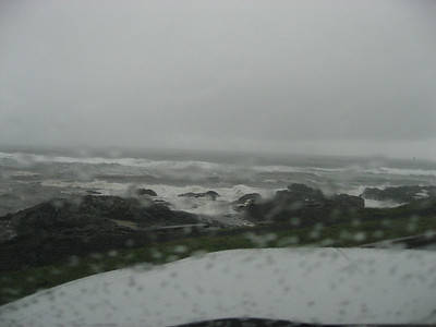 This is outside my room window at the Adobe Inn in Yachats, last night on the coast.  New few pics are the awesome storm while there.
