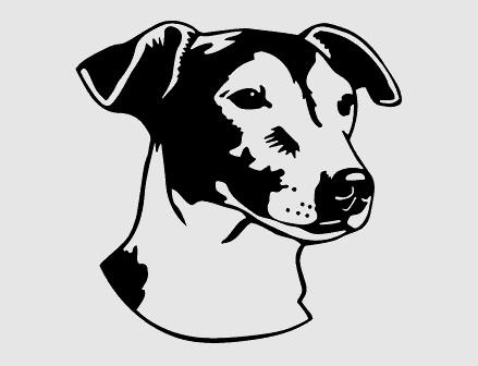 """Jack russel sticker 15 cm Rechts, € 5,80<br /> gekocht bij, zie  <a href=""""http://www.stickers.be"""">http://www.stickers.be</a>"""