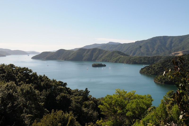 Queen Charlotte Sound on the way back to Picton
