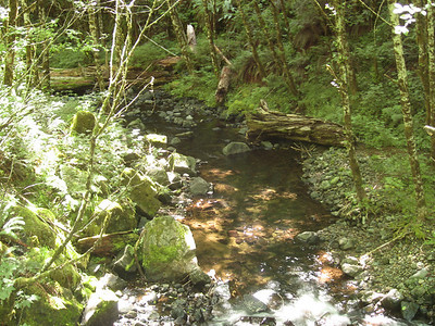 Elk Creek.