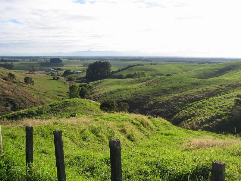 Welcome to New Zealand!  A lot of NZ looks like this. Just South of Auckland.