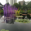 Chihuly Exhibit at the Botanical Garden