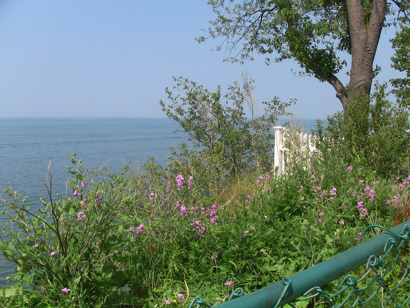 Lake Erie viewpoint