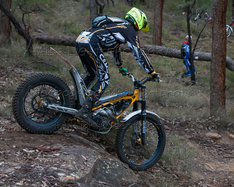 15th June 2014: NSW Trials - Pacific Park