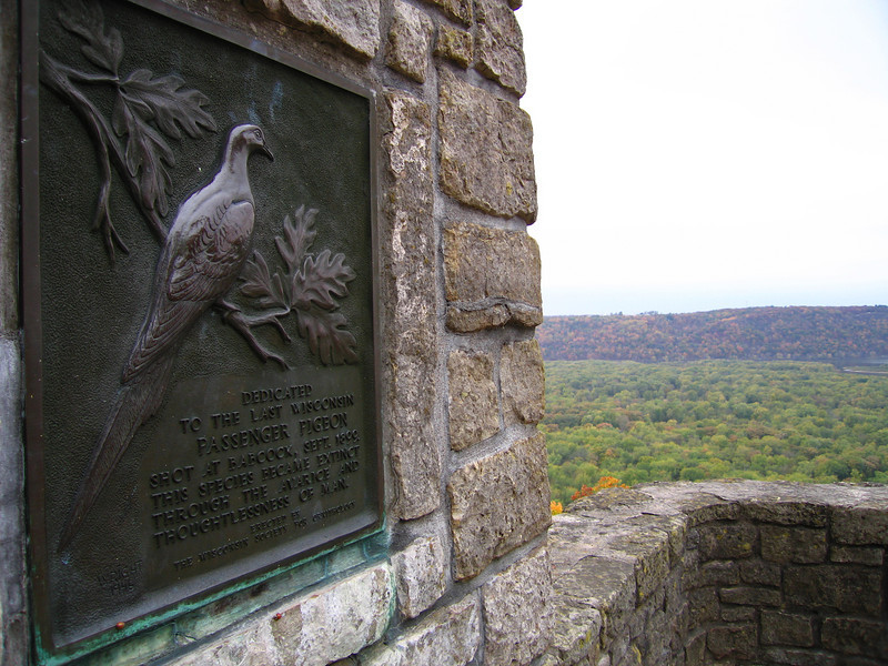 Wyalusing State Park Passenger Pigeon Memorial