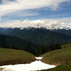 Hurricane Ridge, Olympic National Park WA.