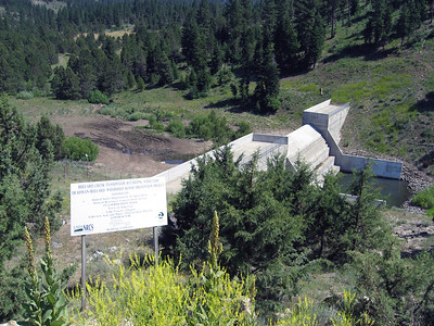 """I thought this was an unusual structure - not quite a dam, but something LIKE a damn.  Turns out to just be a """"slower downer"""" for the water that runs out of the hills in this canyon, which ends up at the city pool in the middle of Lakeview..  The canyon, not the water!  ;-)"""