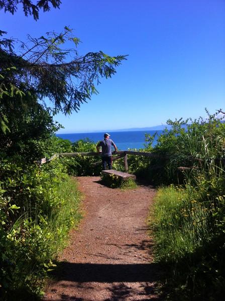 Hiking trail at Patricks Point, CA