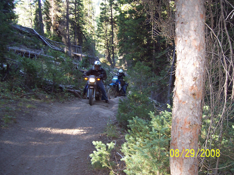 Here's Kevin and Doug fighting through a challenging spot. Just before this area we had crossed a creek with a rock step on the other side. I had taken a bad line up the step and dropped the bike. I broke my right rear turn signal on a rock.
