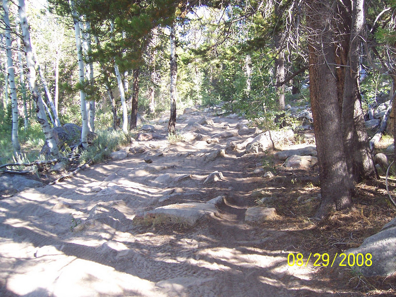 "When Larry chugged up this hill, I was about to say,"" Forget it. This is not KLR country"", and turn around and go back to an easier route; but then Kevin, the novice, chugged his TW up through this rock garden. I couldn't quit if he wouldn't!"