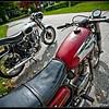Goldie-Ducati