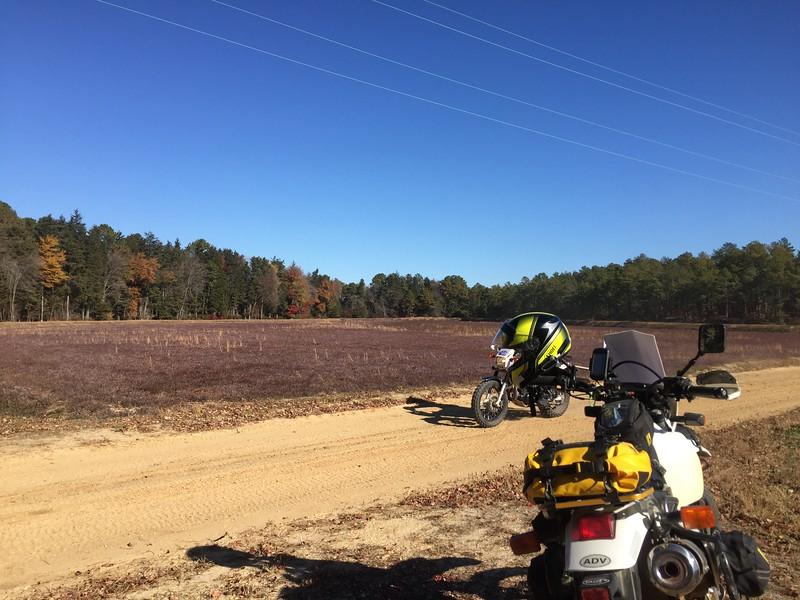 PB500 Cranbery Bog Helmeted Bike Lost RIder