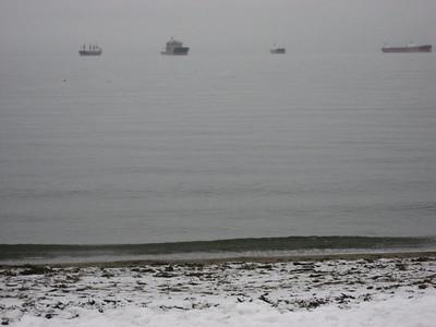Polar Bear Swim 2009