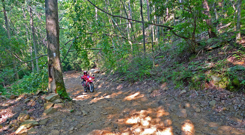 Joe ascending hill after a (dry) creek crossing