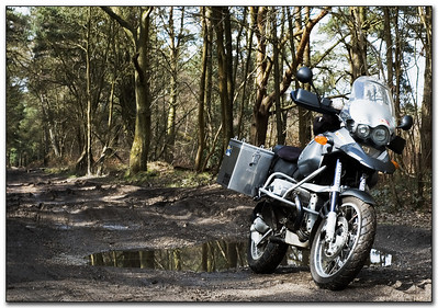 BMW R1150GS - photo by GSclubUK'er 'MasterDabber' (aka Derek). Derek is a keen photographer, take a look at some of his work here:  http://s39.photobucket.com/albums/e170/DerekJordan A green lane near to Pirbright/Deepcut in Surrey - Derek's standard 1150, a 2003 import from Germany. TT Panniers, Reyno radiator grill, BMW beak extender, Reyno rear rack extension, standard exhaust (exhaust now removed and Bryn's stubby fitted but not at the time of the photo), TT tank bag, TT roadbook. Graphitan, Tourance tyres.