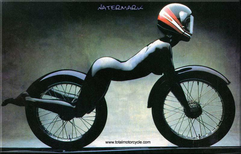 """Ok not a GS but a cool image! :-)<br /> Puts a new perspective on the term """"biker girl"""" LOL"""