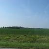 Fields in Illinois. Mostly they were growing maize.