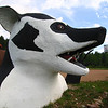 Birnamwood, Wisconsin - World's Largest Badger<br /> A giant badger head and claws -- part of a once-larger statue -- now emerge from the ground as greeters for a strip club.<br /> forum