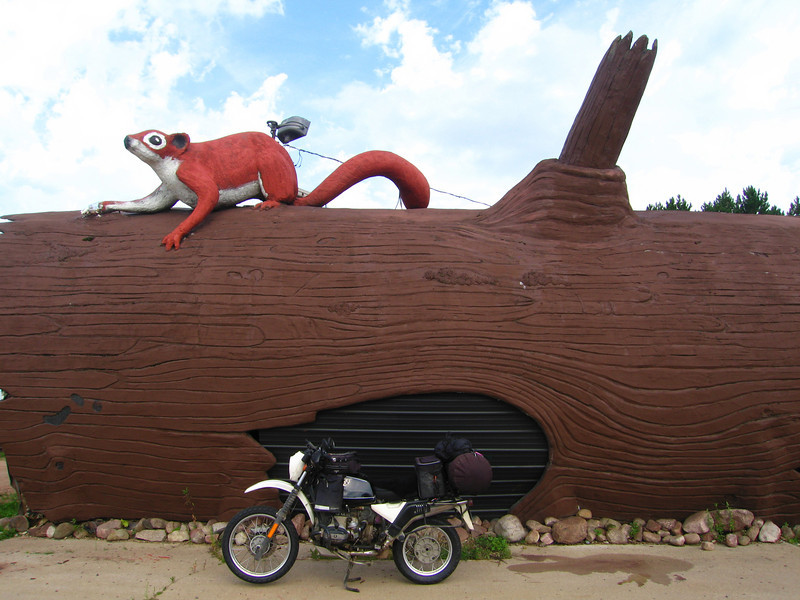 Birnamwood, Wisconsin - World's Largest Badger<br /> <br /> Was at one time part of a gift shop, now part of a Gentlemens Club<br /> forum
