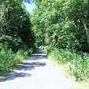 Narrow road up to Reddish Knob.