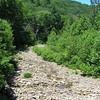 Dry creek bed crossing on FR 85 or FR95