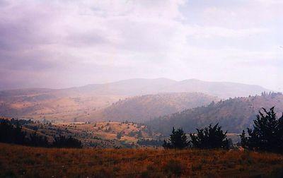 2n,Oregon,near Condon,july21,2001