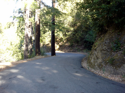Redwood Rally, Rio Nido CA - September 2007