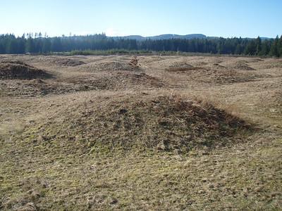 Ride Feb. 16 Mima Mounds