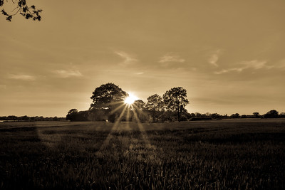 Sunset over Jodrell Bank