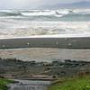 The Pacific Ocean - MacKerricher State Park.