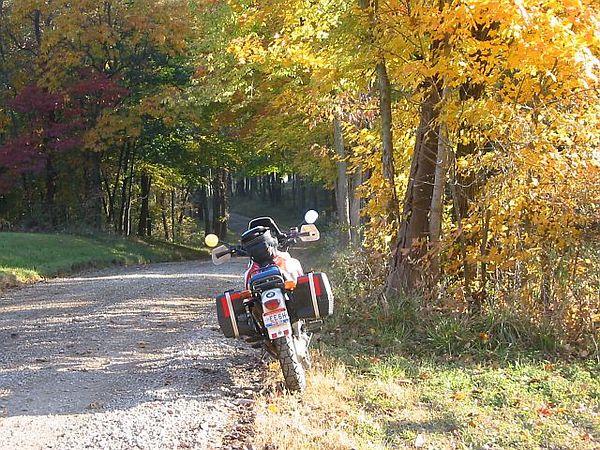 Goonie Shot - Fall colors