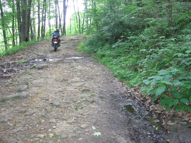 Some trail... some rider.