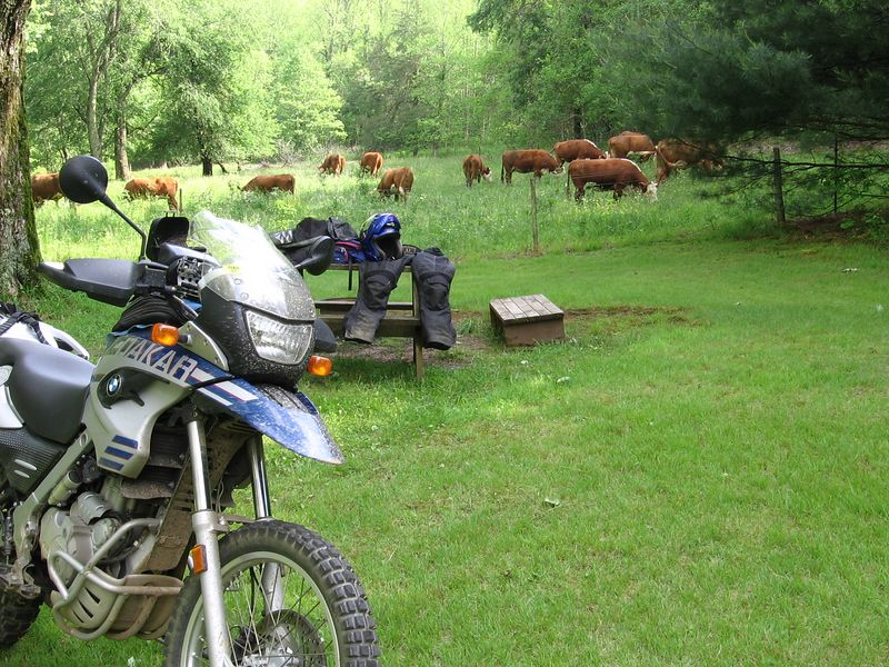 Back at TWO. We rode till the cows came home!