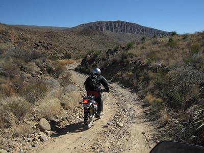 Rides 2009