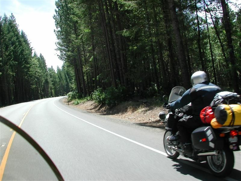 It's only 80 miles from Eureka to Crescent City, where we met GSDave, but somehow it took us 260.