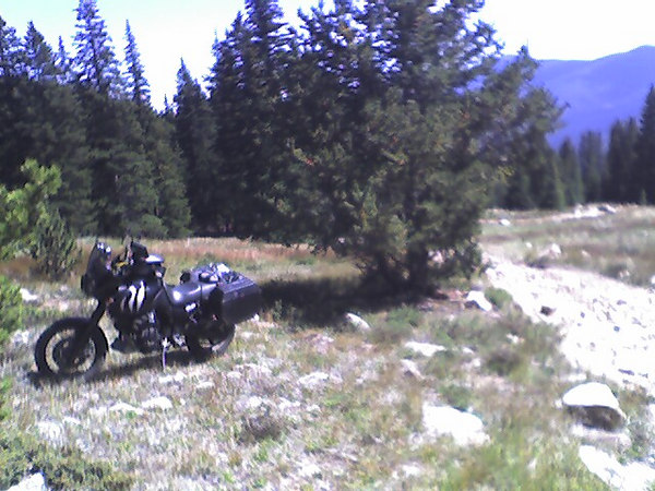 I was going up hill on the way to georgetown, lost control and ended up riding into the brush on the side.