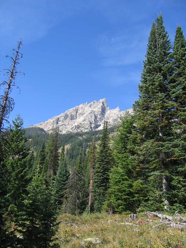 Hiking along the trail, the moutains loom directly above us.