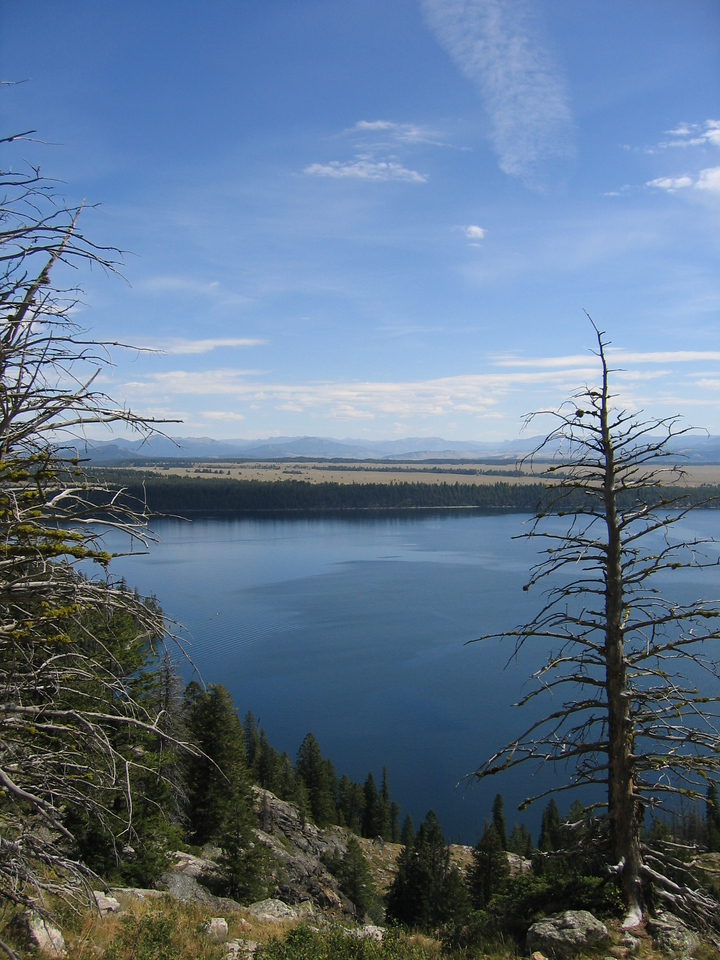 Another view of Jenny Lake.