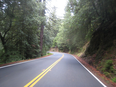 Riding Highway 20 over to Fort Bragg during the day reveals that is a great road.  Too bad that the wet conditions leave me unable to get a good lean on.  I'd love to hit this road when its dry (and daylight).