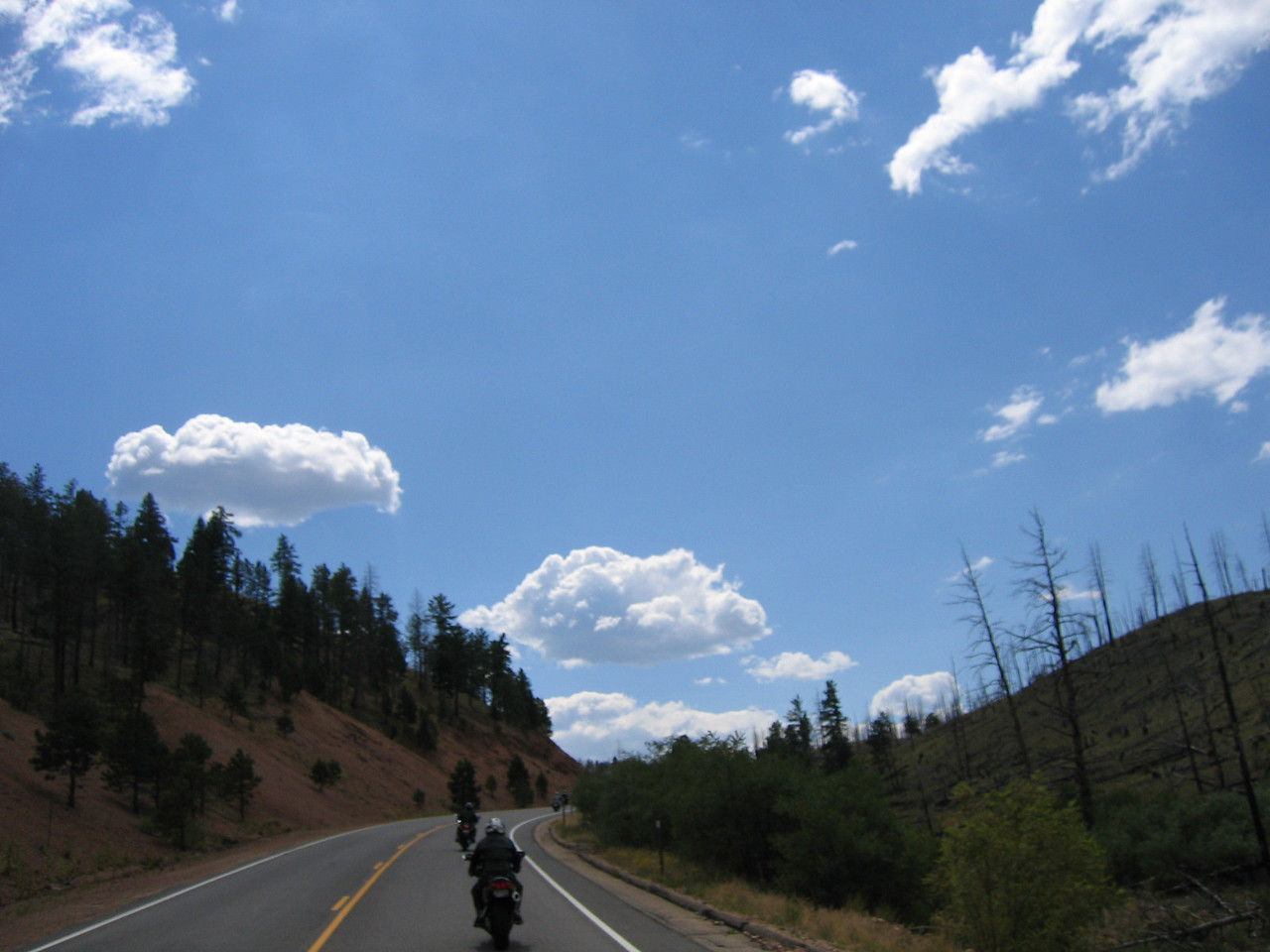 The road goes through several major forest-fire areas from the last decade.  It's a surreal landscape at times.