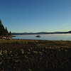 Dawn on the beach, Lake Almanor, CA
