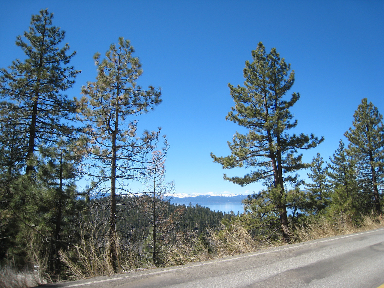 Lake Tahoe begins to peek through the trees and hills...