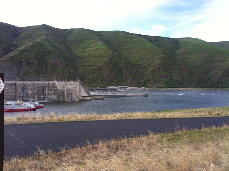 Those are fish barges on the left, moored at the dam
