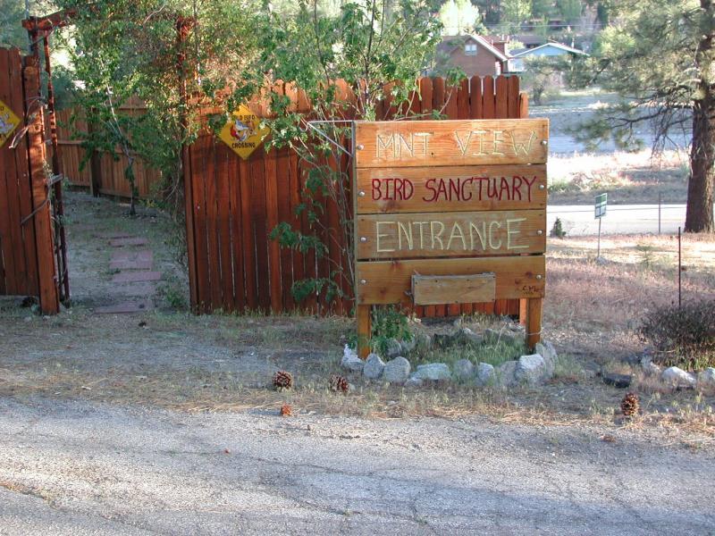Bird sanctuary, huh?