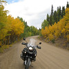 Fall colors, Fairplay side of Boreas Pass