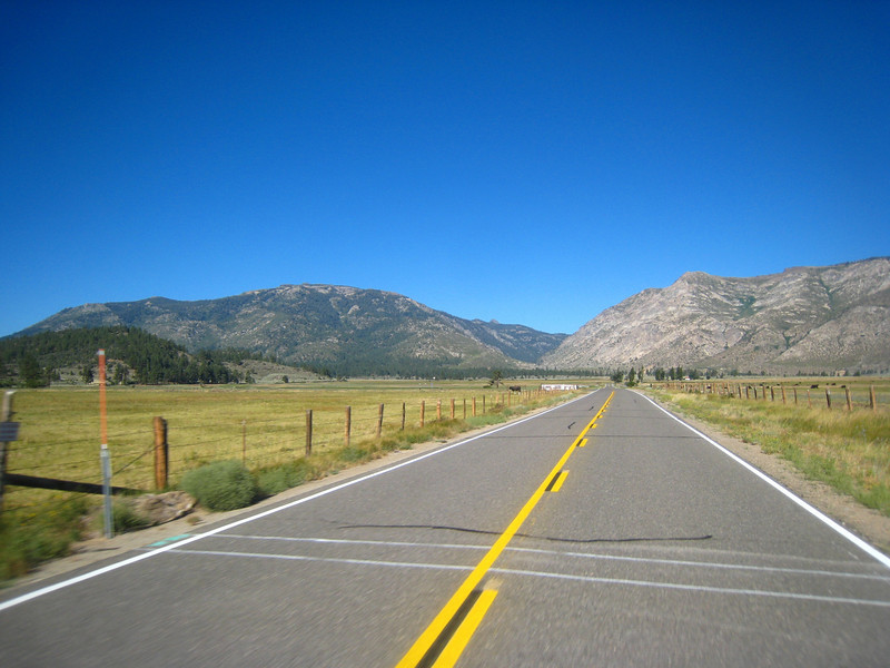 I lead the three of us through the side roads, off of 395.  There is less traffic, fewer cops, and more curves.