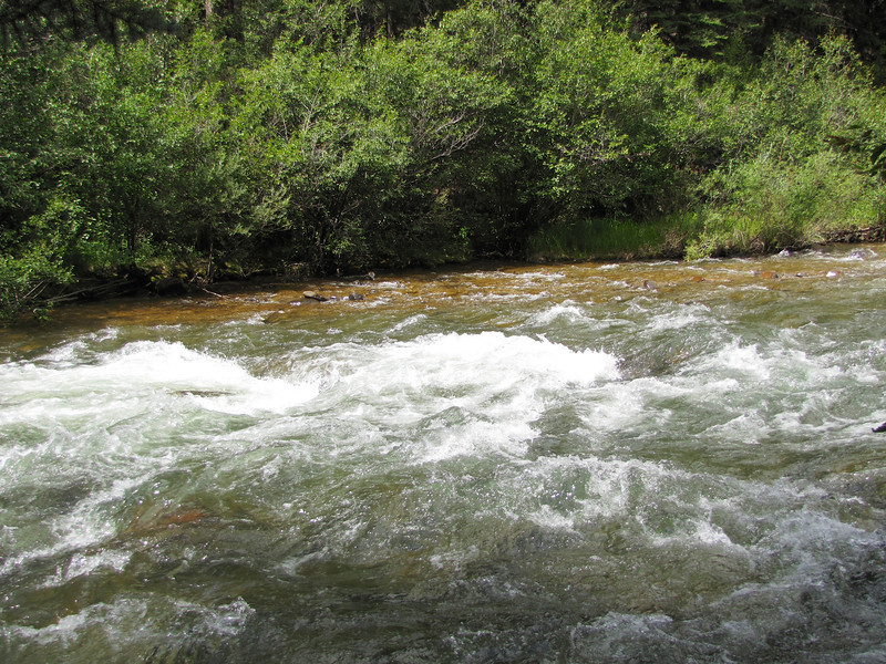 The North Fork of the South Platte river, just north of Bailey, CO